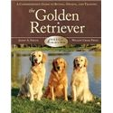 Breed Basics: The Golden Retriever Image