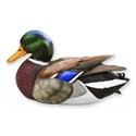 Loon Lake Miniature Mallard Image