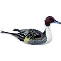 Loon Lake Life-size Swan Lake Drake Pintail Image