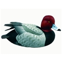 Loon Lake Life-size Swan Lake Redhead Waterfowl Sculpture Image
