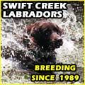 Swift Creek Retrievers