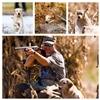 "GRHRCH UH Maple Creek's Calumet Coyote MH (call name ""Yote"") X GRHRCH Hickory Hi Image"