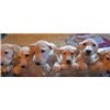 SUPER DUCK PUPS Black and Yellow Labrador Pups Image